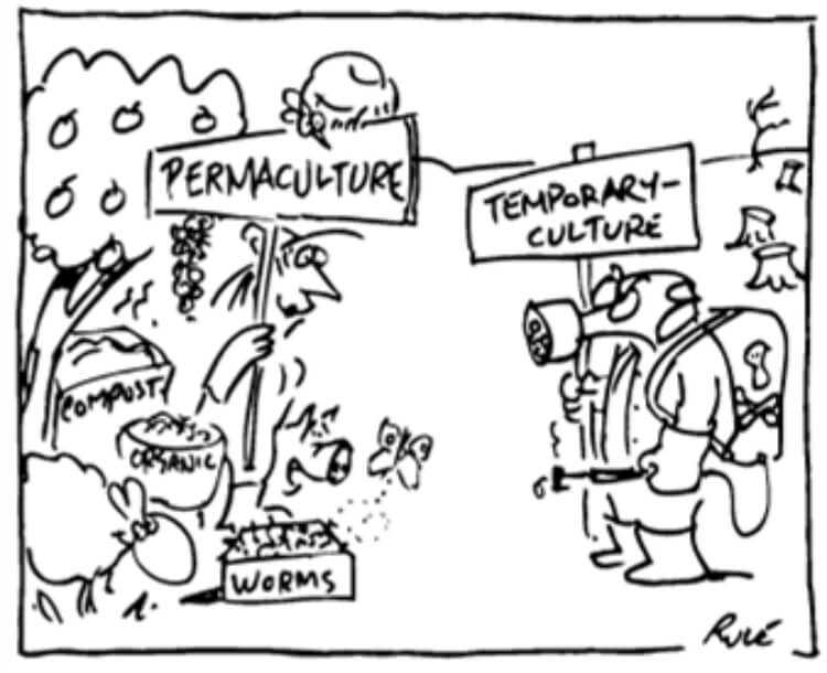 Charge sobre permacultura