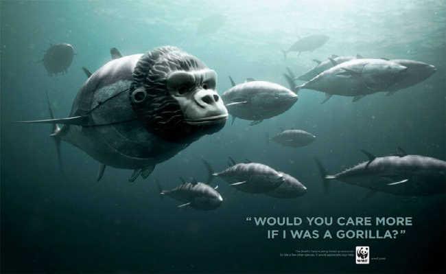 Atum: você se importaria mais se fosse um gorila?