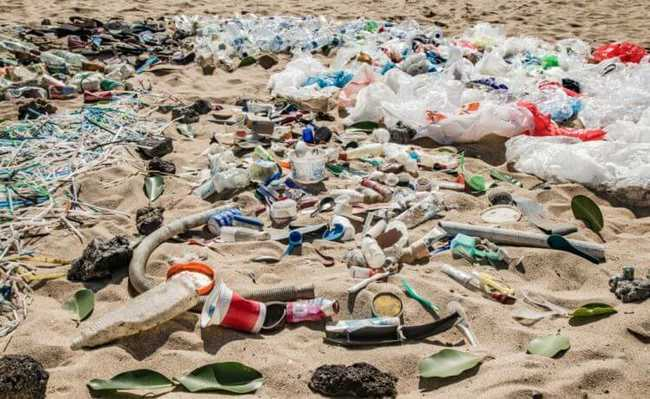 Campanha Mares Limpos