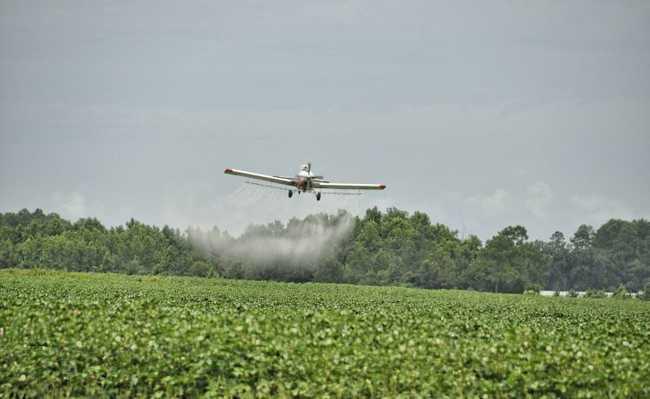 Pesticidas Americana