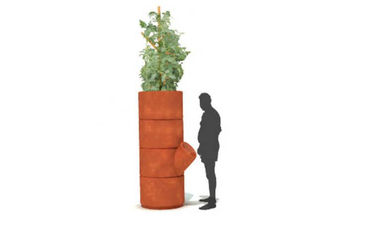 Invenção faz uso da reutilização de urina para fertilizar planta