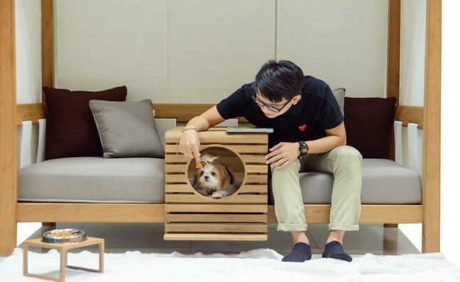 Móvel feito para acomodar humanos e seus animais