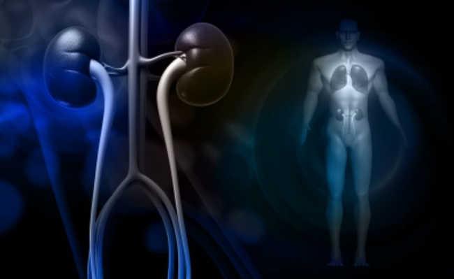 efeitos da falta de calcio no organismo