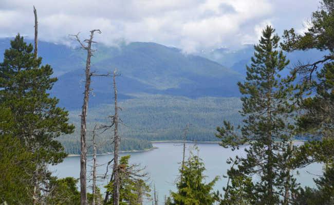 Floresta Nacional Tongass, Alasca, Estados Unidos