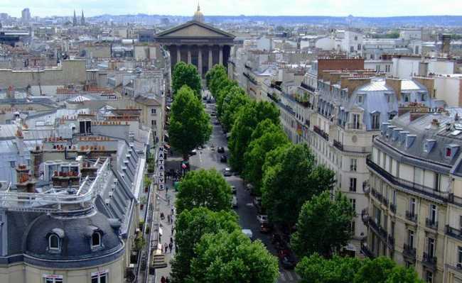 Árvores nas megacidades