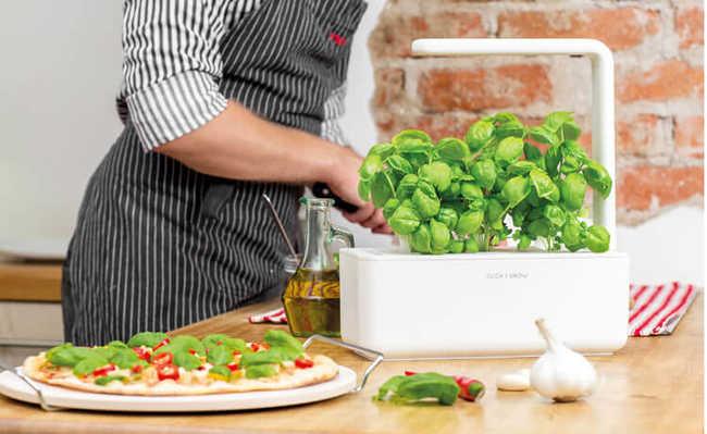 Smart Herb Garden: horta ou jardim dentro de casa
