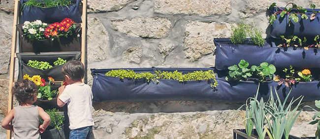 Noocity: as hortas urbanas inteligentes que economizam cerca de 80% de água