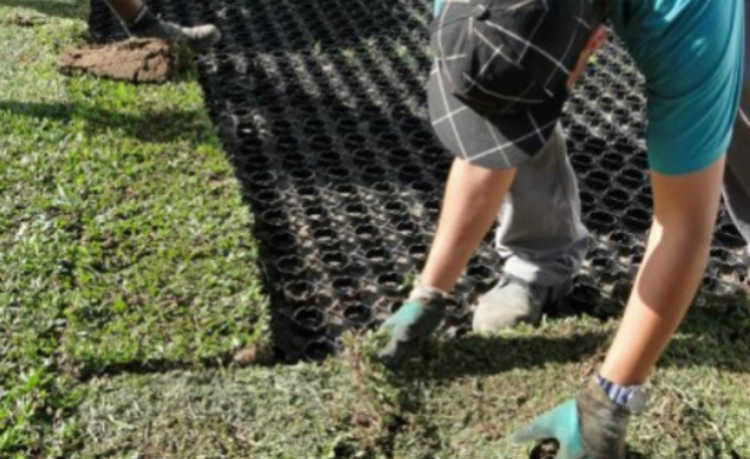 Plantando grama