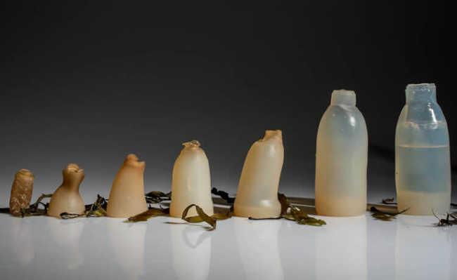 Garrafa de água biodegradável feita com espécie de gelatina