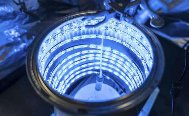 Fotossíntese artificial