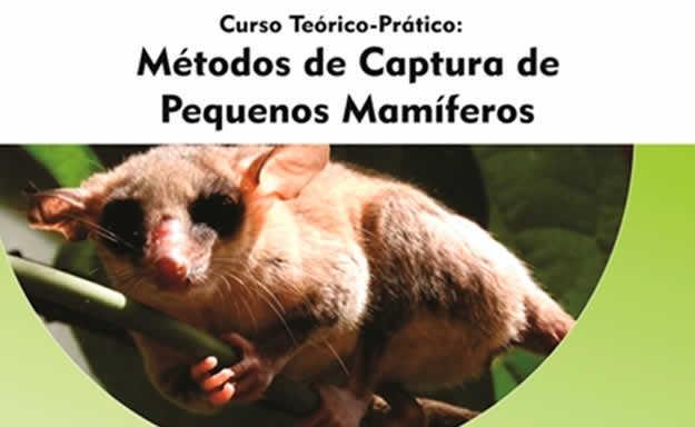 métodos de captura de pequenos mamíferos para resgate