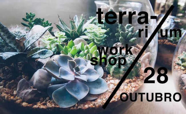workshop de terrarium