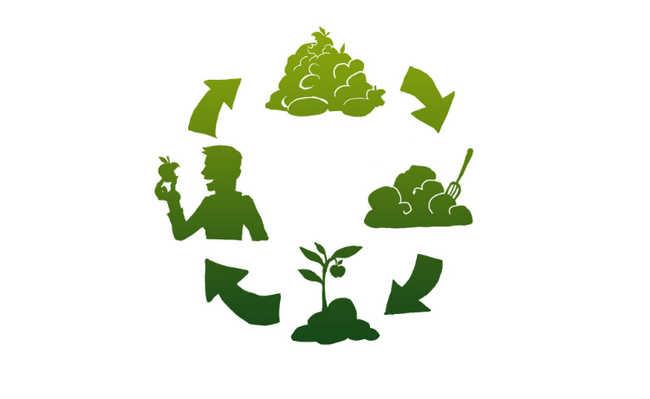 Solução para o que fazer com os restos de alimentos
