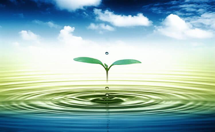 Usos da água